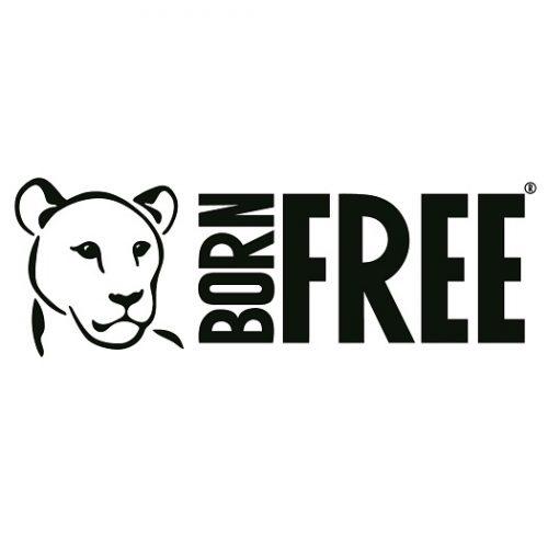 Born Free Square